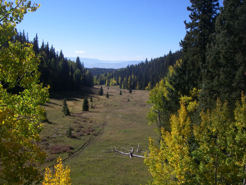 West Elk Wilderness Outfitters - Resume Examples | Resume